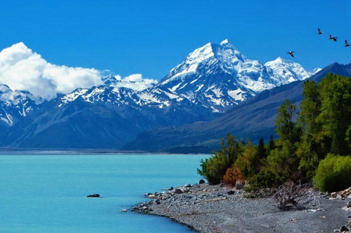 Nueva Zelanda: Becas Para Doctorado en Diversos Temas Gobierno de Nueva Zelanda