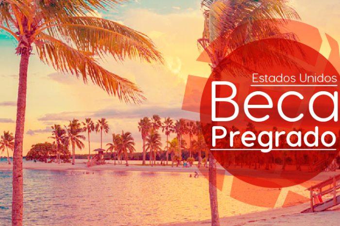 Estados Unidos: Becas Para Pregrado en Diversos Temas University of Miami