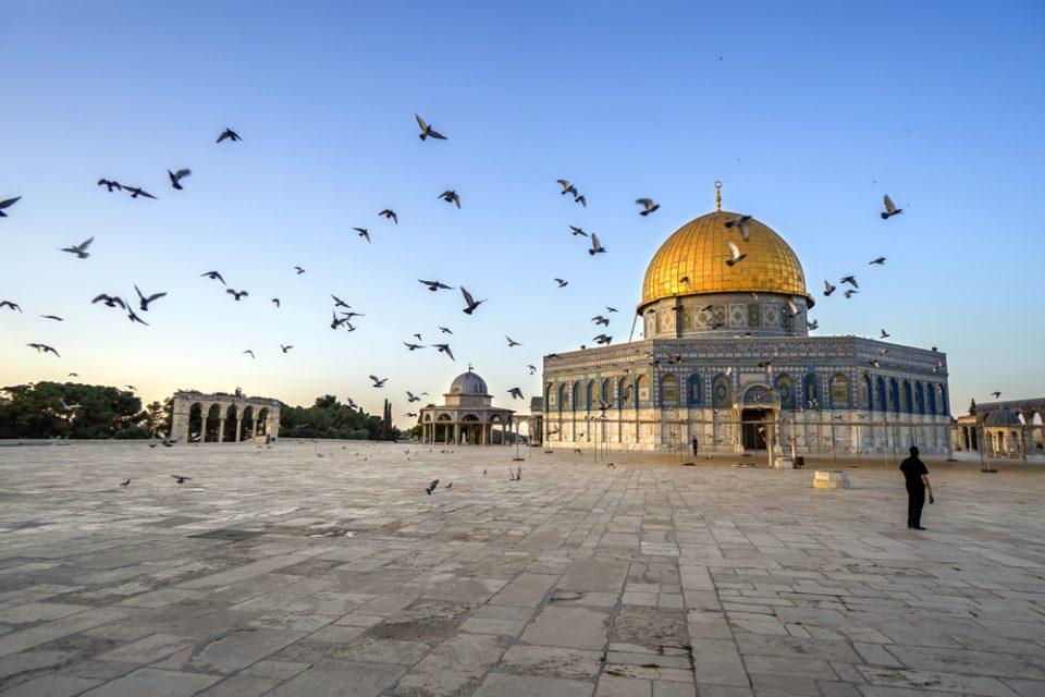Israel: Becas Para Idiomas en Hebreo Gobierno de Israel